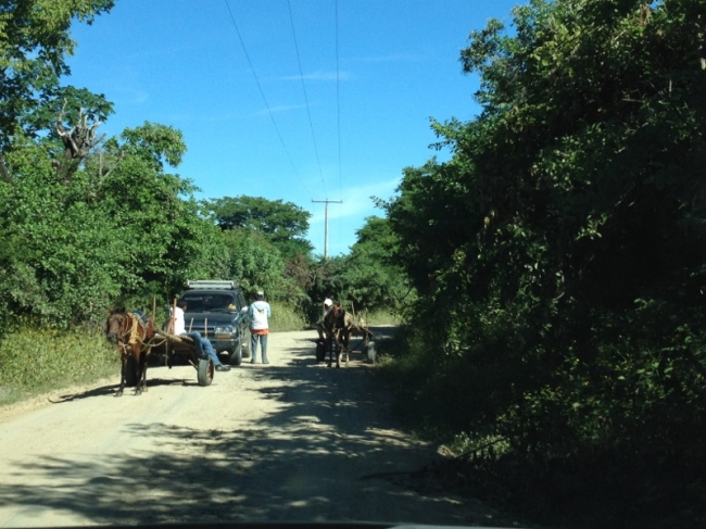 Traffic jam on road to Salinas Grande