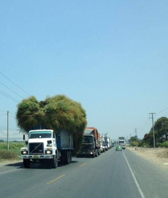 A light load in Peru