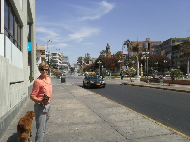Downtown Arica